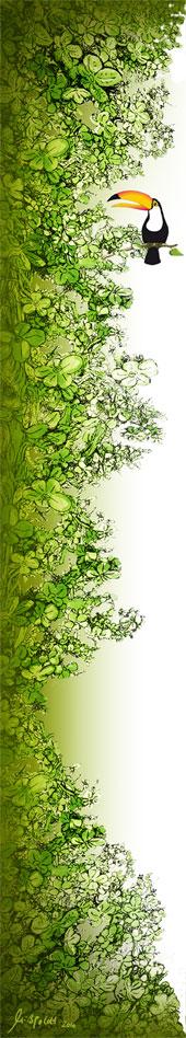 Campixx Dschungel