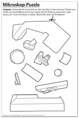 Lichtmikroskop-Puzzle (Link-Magnet)