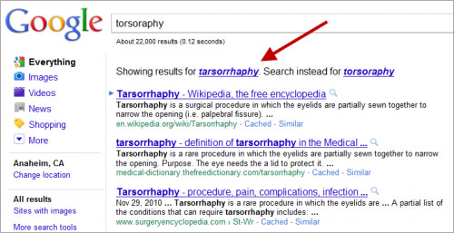 "torsoraphy google result (vorne ein ""korrekter"" Treffer)"
