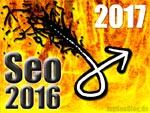 Seo Rückblick 2016, Ausblick 2017