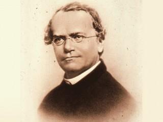 Gregor Mendel Foto