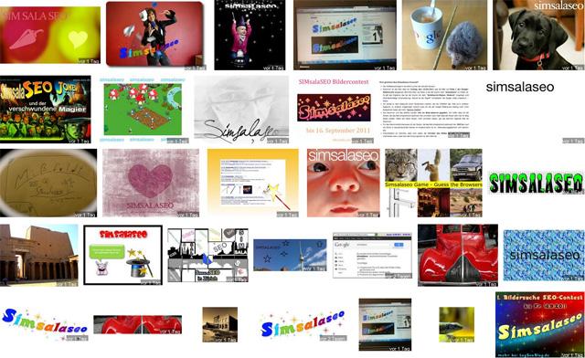 Seo Contest S-MS-L-S - Zwischenstand 17.08-2011