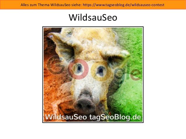 Wildsauseo-Slides (Präsentation)