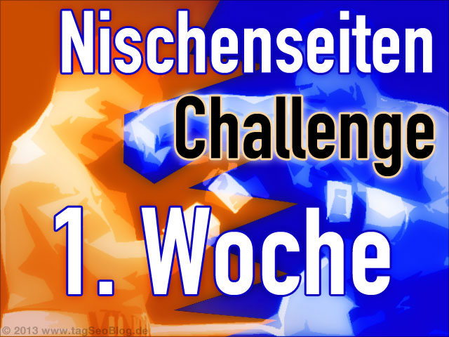 1. Wochenreport zur Nischenseiten-Challenge 2014