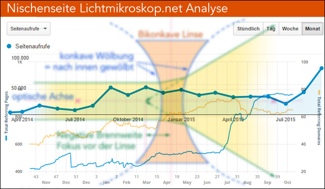 Analyse der Lichtmikroskop-Website nach 1,5 Jahren