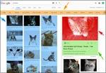 Google-Bildersuche Update (Preview)