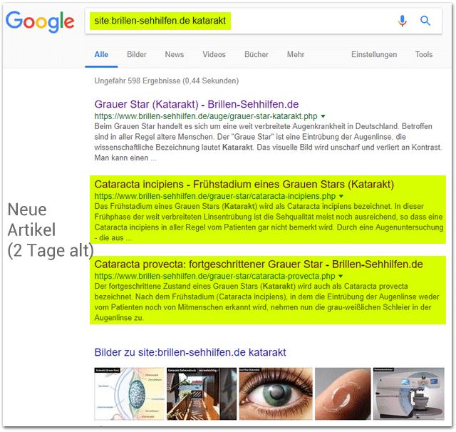 Google Siteabfrage mit Keyword (ohne Zeitbeschränkung)