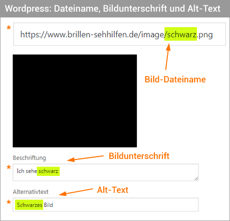 Wordpress Felder befüllen für Bilder-SEO