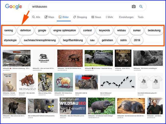 WildsauSeo in der Google Bildersuche - Grundlage der Content-Analyse